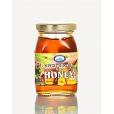 Honey - Organic